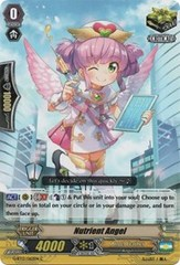 Nutrient Angel - G-BT13/062EN - C