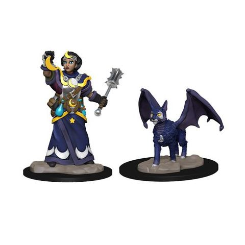Wardlings: Girl Cleric And Winged Cat