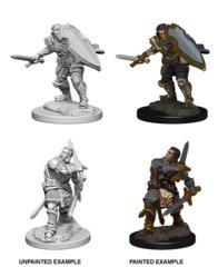 Pathfinder Battles Unpainted Minis - Human Male Paladin