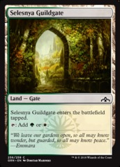 Selesnya Guildgate (256) - Foil