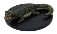 Crocodile - 30/44
