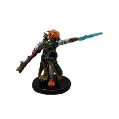 Dragonborn Draconic Sorcerer (Green Robe) - 12b/44