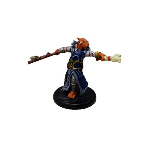 Dragonborn Draconic Sorcerer (Blue Robe)