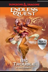 Big Trouble: An Endless Quest Book HC