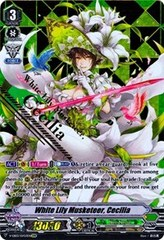 White Lily Musketeer, Cecilia - V-EB03/S003 - SVR