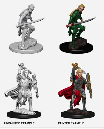 Nolzurs Marvelous Miniatures - Female Elf Fighter