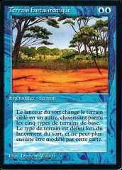 Phantasmal Terrain - French