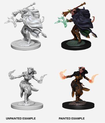 Nolzurs Marvelous Miniatures - Female Tiefling Warlock