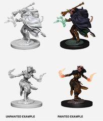 Nolzur's Marvelous Miniatures - Female Tiefling Warlock