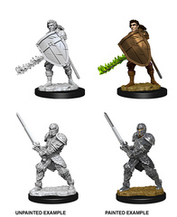 Nolzur's Marvelous Miniatures - Male Human Fighter