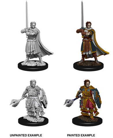 Nolzurs Marvelous Miniatures - Male Human Cleric