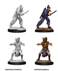 Nolzur's Marvelous Unpainted Miniatures - Male Human Monk