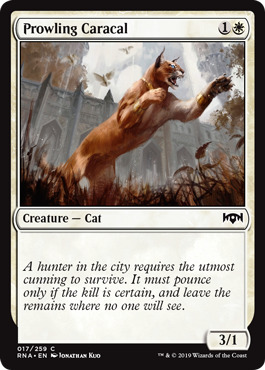 Prowling Caracal - Foil