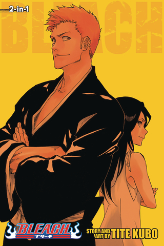 Bleach 3In1 Tp Vol 25 (STL104636)