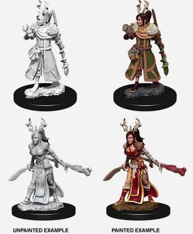 Nolzurs Marvelous Miniatures - Female Human Druid