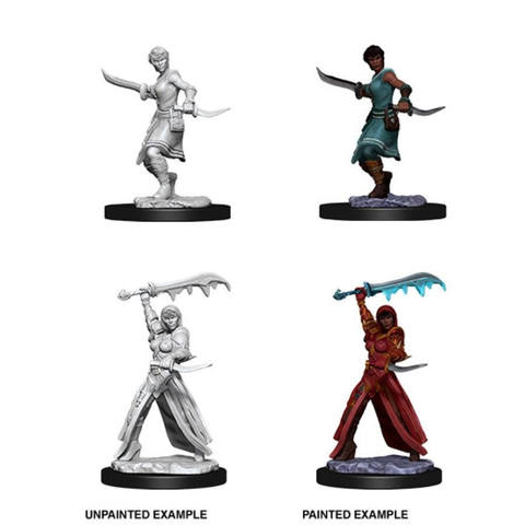 Nolzurs Marvelous Miniatures - Female Human Rogue