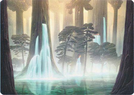 Waterlogged Grove - Art Series
