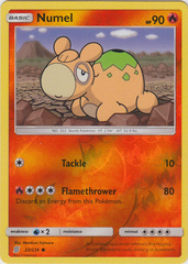 Numel - 23/236 - Common - Reverse Holo