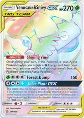 Venusaur & Snivy Tag Team GX - 249/236 - Secret Rare