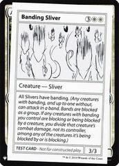 Banding Sliver