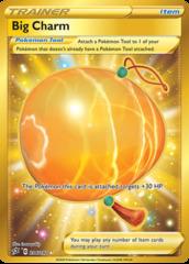 Big Charm - 206/192 - Secret Rare
