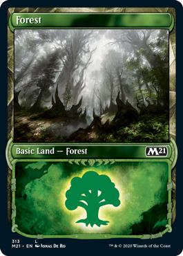 Forest (313) - Foil - Showcase