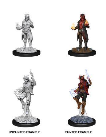 Nolzurs Marvelous Miniatures - Male Tiefling Sorcerer