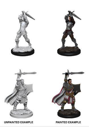 Nolzurs Marvelous Miniatures - Male Human Paladin
