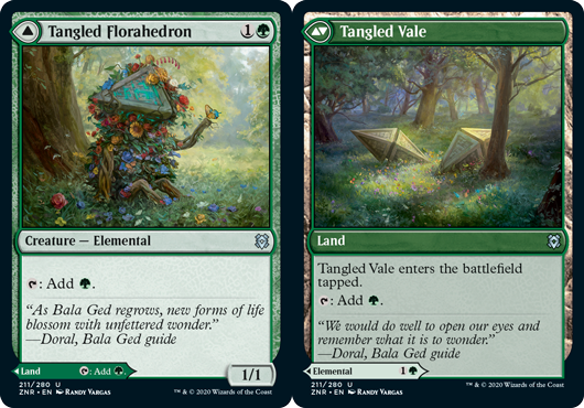 Tangled Florahedron // Tangled Vale