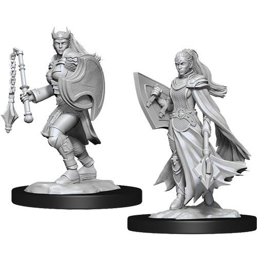 D&D Nolzurs Marvelous Unpainted Miniatures: W14 Female Kalashtar Cleric