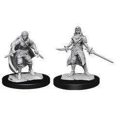 D&D Nolzur's Marvelous Unpainted Miniatures: W14 Female Half-Elf Rogue
