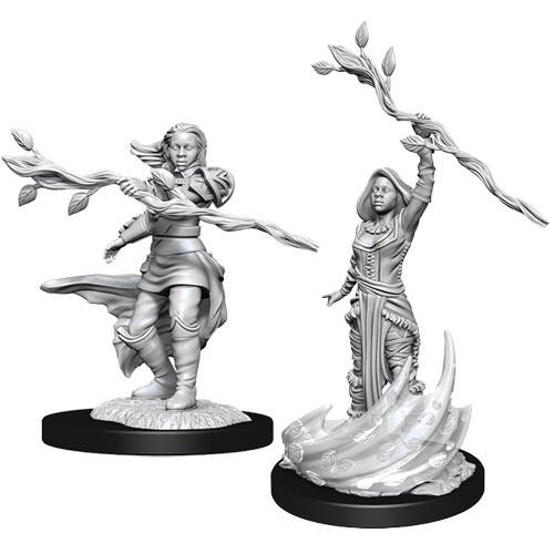 D&D Nolzurs Marvelous Unpainted Miniatures: W14 Female Human Druid