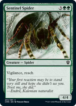 Sentinel Spider