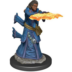 D&D Premium Painted Figure: W5 Female Human Wizard