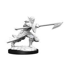 Magic: The Gathering Unpainted Miniatures: Joraga Warcaller & Joraga Treespeaker (Elves)
