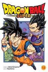 Dragon Ball Super Gn Vol 12 (STL175964)