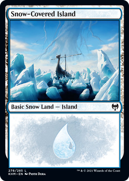Snow-Covered Island (278)