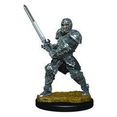 D&D Premium Painted Figure: Human Fighter