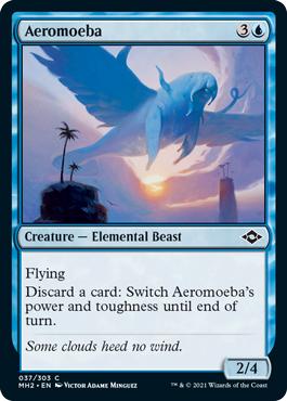 Aeromoeba - Foil