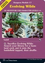 Evolving Wilds - Foil - Dungeon Module