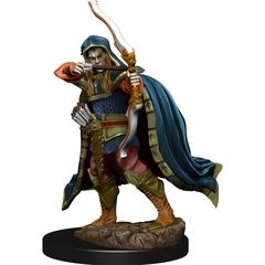 D&D Premium Painted Figure: W6 Elf Rogue Male