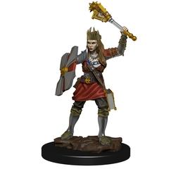D&D Premium Painted Figure: W6 Human Cleric Female