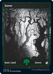 Forest (276) - Foil