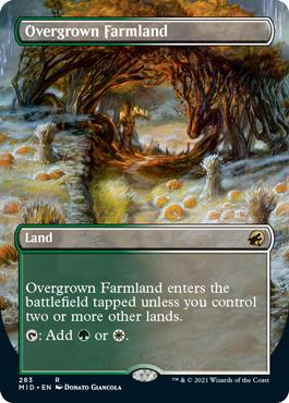 Overgrown Farmland - Borderless