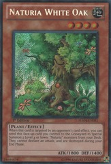 Naturia White Oak - HA04-EN051 - Secret Rare - 1st Edition