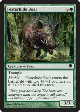 Festerhide Boar