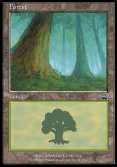 Forest (347) - Foil on Channel Fireball