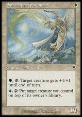 Sunscape Apprentice - Foil