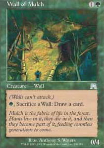 Wall of Mulch - Foil