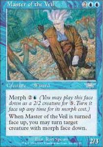 Master of the Veil - Foil
